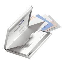 DURABLE Visitenkarten-Etui BUSINESS CARD BOX DUO, mattsilber
